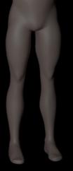legs-front